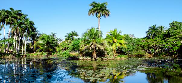 NATURA A CUBA: PARCO NAZIONALE MONTEMAR E PENINSULA DE ZAPATA